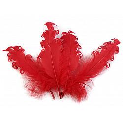 Pene crețe de găscă, lungime 12-18 cm (pachet 4 buc.) - roșu