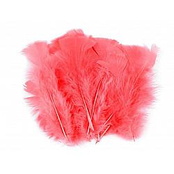 Pene decorative de curcă, lungime 11-17 cm (pachet 20 buc.) - roșu coral
