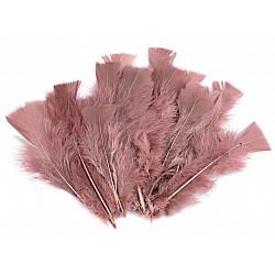 Pene decorative de curcă, lungime 11-17 cm (pachet 20 buc.) - roz antic deschis