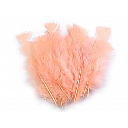 Pene decorative de curcă, lungime 11-17 cm (pachet 20 buc.) - roz somon deschis