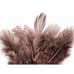 Pene decorative de fazan, lungime 5 - 11 cm (pachet 20 buc.) - roz vintage - închis