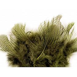 Pene decorative de fazan, lungime 5 - 11 cm (pachet 20 buc.) - verde kaki mediu