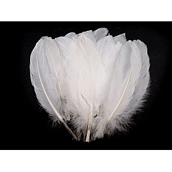 Pene decorative de gâscă, lungime 15-21 cm (pachet 5 buc.) - alb