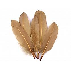 Pene decorative de gâscă, lungime 15-21 cm (pachet 5 buc.) - bej