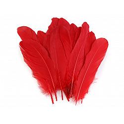 Pene decorative de gâscă, lungime 15-21 cm (pachet 5 buc.) - roșu - închis