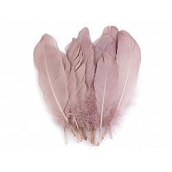Pene decorative de gâscă, lungime 15-21 cm (pachet 5 buc.) - roz antic