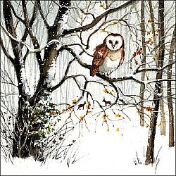 Servetele - Bufnita iarna - 33x33cm, 1 pachet (20 buc.)