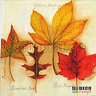 Servetele - Colectia de frunze - 33x33cm, 4 buc